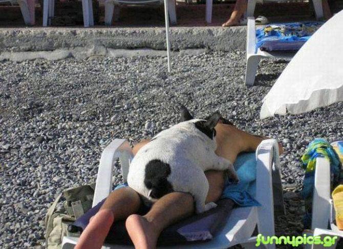 Ξάπλα Στην Παραλία